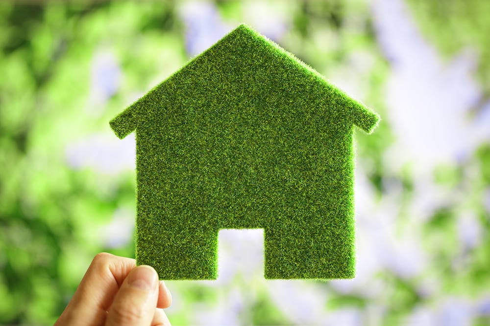 Green eco house environmental background for future residential building plot