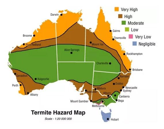 termite-map